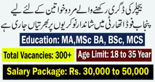 Government Jobs Archives | Rozana Jobs