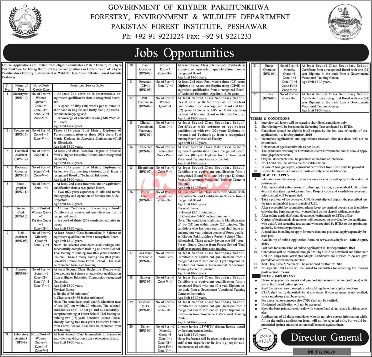 Pakistan Forest Institute Peshawar Jobs August 2020