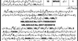 BZU Jobs October 2020,