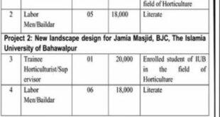Islamia University of Bahawalpur IUB Jobs 2020