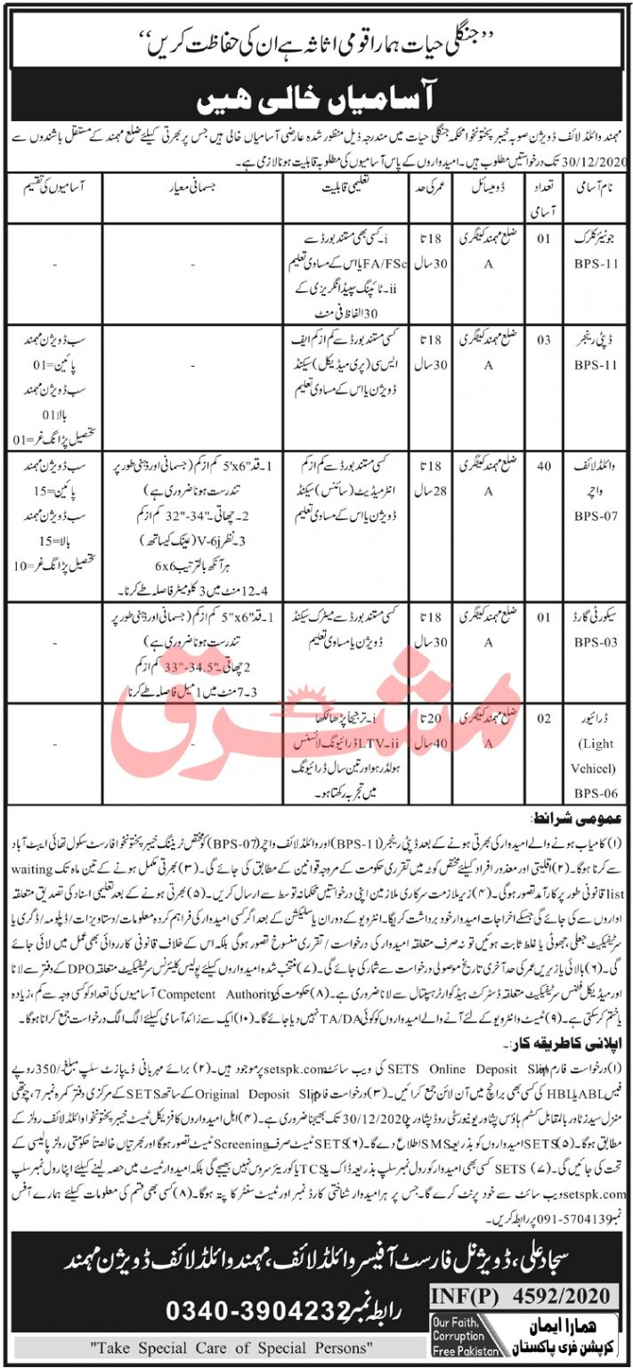 Jobs in Wildlife Department KPK 2020